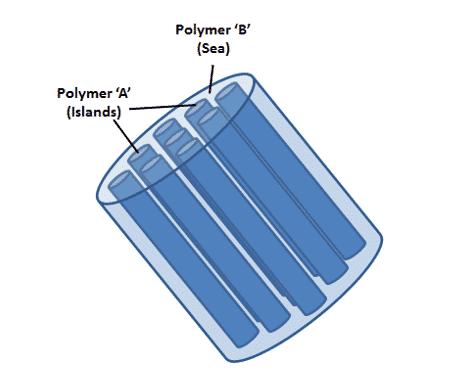 Fibers image